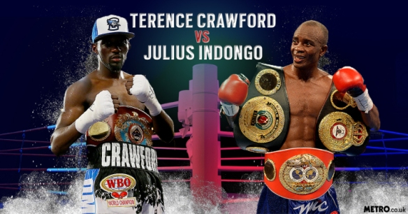 crawford indongo 2